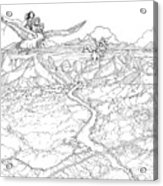 Chiricahua Mountains Acrylic Print