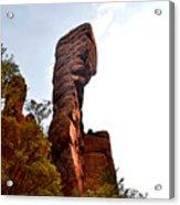 Chiricahua Mountaintop 006 Acrylic Print