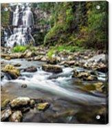 Chittenango Falls  Acrylic Print
