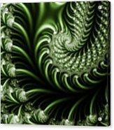 Chlorophyll Acrylic Print