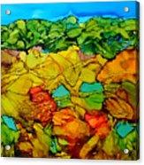 Chocolate Hills Pilippines Acrylic Print