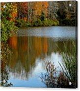 Chris Greene Lake - Reflections Acrylic Print