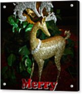 Christmas Card Acrylic Print by Chris Brannen