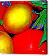Christmas Fruit Acrylic Print