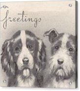 Christmas Illustration 1252 - Vintage Christmas Cards - Two Dogs Acrylic Print