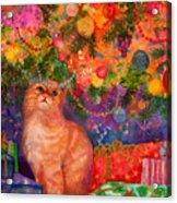 Christmas Kitty Acrylic Print