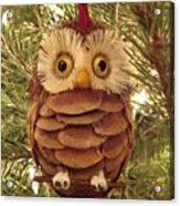 Christmas Owl Acrylic Print