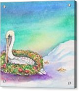 Christmas Pelican Acrylic Print