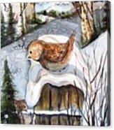 Christmas Roof Acrylic Print