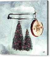 Christmas Tree Snowglobe Acrylic Print