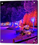 Christmas Trees Row And Frozen Lake View Acrylic Print