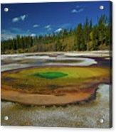 Chromatic Pool Acrylic Print