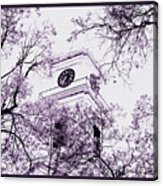 Church Clock In Autumn Acrylic Print