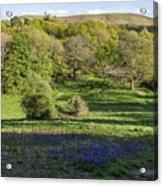 Church Stretton Landscape Acrylic Print