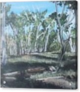 Cimmeron Grasslands Acrylic Print