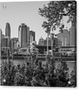 Cincinnati Skyline Through Trees Acrylic Print