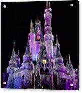 Cinderellas Castle At Night Acrylic Print by Carmen Del Valle