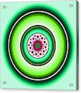 Circle Motif 229 Acrylic Print