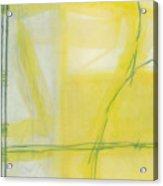 Citron Acrylic Print