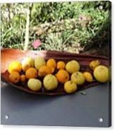 Citrus Fruits Acrylic Print
