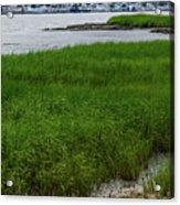 City Marina Marsh View Acrylic Print