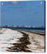 City Of Clearwater Skyline Acrylic Print