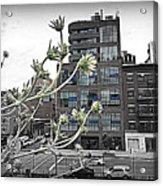 City Sway Acrylic Print