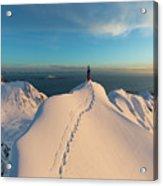 Clad000148 Acrylic Print