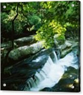 Clare Glens, Co Clare, Ireland Acrylic Print by The Irish Image Collection