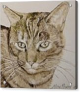 Clarise Acrylic Print