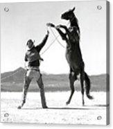 Clark Gable, The Misfits Acrylic Print