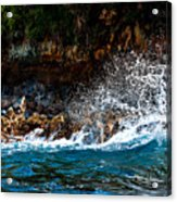 Clashing Nature Acrylic Print
