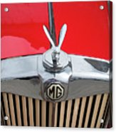 1936 Mg Ta Radiator And Mascot Acrylic Print