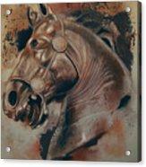 Classical Horse 5 Acrylic Print