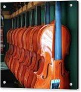 Classical Violins Acrylic Print