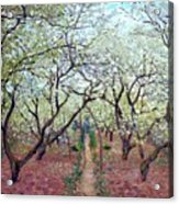 Claude Monet Orchard In Bloom Acrylic Print
