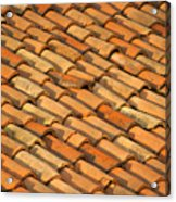 Clay Roof Tiles Acrylic Print by David Buffington