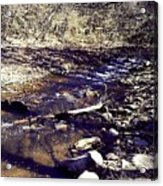 Cleansing Stream Acrylic Print