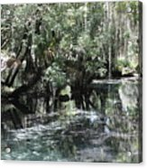 Clear Lithia Springs Acrylic Print
