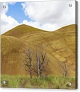 Clear Sky At Painted Hills Acrylic Print