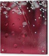 Clear Water IIi Acrylic Print