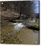 Clear water Shteaza near Rasinari Acrylic Print