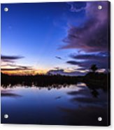 Clearing Storm Over The Anhinga Trail Acrylic Print
