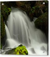 Clearwater Falls 1 Acrylic Print