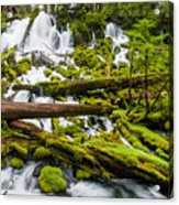 Clearwater Falls And Rapids Acrylic Print
