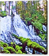 Clearwater Falls, Highway 138, Umpqua National Forest, Oregon Acrylic Print