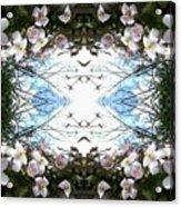 Clematis Sky Window Acrylic Print