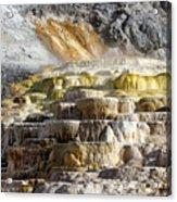 Cleopatra Terrace In Yellowstone National Park Acrylic Print