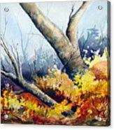 Cletus' Tree Acrylic Print