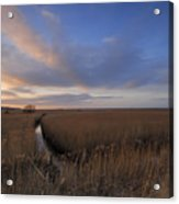 Cley Marshes  Acrylic Print